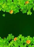 Темные ая-зелен предпосылка с клеверами и золотой Стоковые Изображения RF