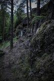 Темные валуны предусматриванные во мхе на наклоне в северную древесину стоковое фото