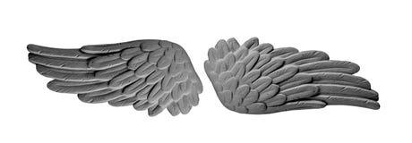 Темные крыла гипсолита Стоковые Изображения RF