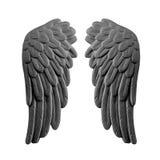 Темные крыла гипсолита Стоковое фото RF