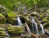 Темные полые падения, национальный парк Shenandoah Стоковые Изображения