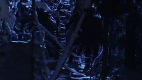 Темные силуэты 2 людей двигая в снежный лес зимы молчаливой ночью акции видеоматериалы