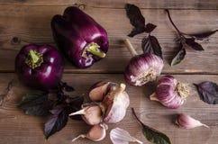 Темные фиолетовые перцы с листьями базилика и чеснока стоковые фотографии rf