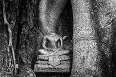 Темный безглавый Будда Стоковое Изображение