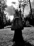 Темный деревянный гриб Стоковая Фотография