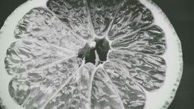 Темный лимон Стоковое Изображение