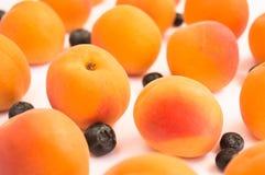 Темный и яркий - абрикосы и голубики Стоковое Изображение