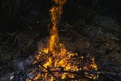 Темный костер предпосылки от ветвей Пламя и искры Стоковое Изображение