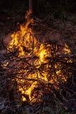Темный костер предпосылки от ветвей Пламя и искры Стоковые Фото