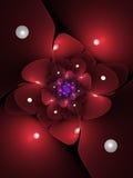 Темный - красный цветок фрактали Стоковая Фотография RF