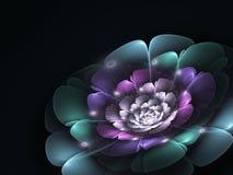 Темный красочный цветок фрактали, цифровое художественное произведение Стоковое фото RF