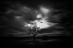 Темный мир Стоковые Изображения RF