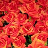 Темный - оранжевые поддельные розы закрывают Стоковое Изображение