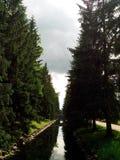 Темный парк Стоковые Фото