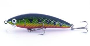 темный прикорм рыболовства Стоковая Фотография RF