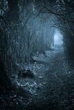 Темный пугающий проход до конца Стоковое Изображение RF