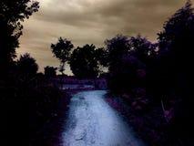Темный путь в вечере стоковые фото