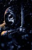 темный ратник Стоковое Фото