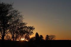 Темный силуэт деревьев и кузенов на фоне оранжевого захода солнца Створки природы вечера к романтичному настроению Теплый col Стоковое фото RF