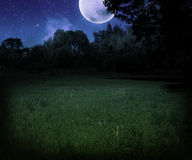 Темный страшный лужок на предпосылке Halloween ночи Стоковые Фото