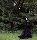 Темный ферзь в парке Стоковая Фотография