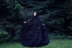 Темный ферзь в парке Стоковые Фотографии RF