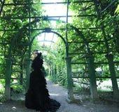 Темный ферзь в парке Стоковые Изображения