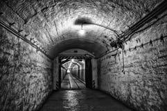 Темное подземелье Стоковые Фото