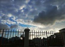 Тенистое небо стоковые фото