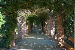 Тенистый переулок. Стоковое Фото