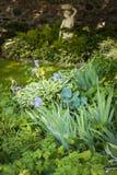 Тенистый сад с perennials стоковое изображение