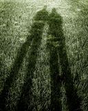 тени зеленого цвета травы Стоковое Фото