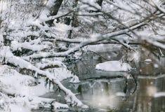 Тени зимы, леса снежинки реки Outdoors Стоковое Изображение RF