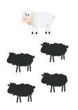 Тени игры, овцы Стоковые Изображения RF