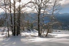 Тени и снег вдоль межгосударственные 90, штат Вашингтон стоковое фото rf
