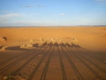 Тени каравана верблюда в пустыне Сахары Стоковые Изображения