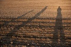 Тени на поле Стоковое Изображение RF