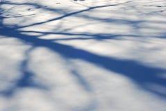 тени светов Стоковое Фото