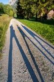 тени Стоковое фото RF