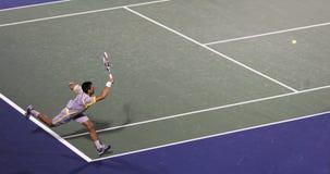 Теннисист профессионала Novak Djokovic стоковые фотографии rf