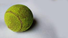 Теннисный мяч на изолированной предпосылке стоковое изображение