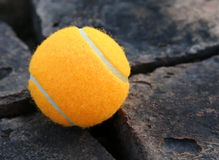 Теннисный мяч Стоковая Фотография RF