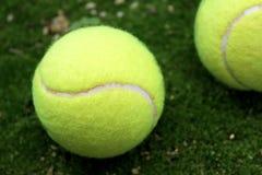 Теннисный мяч Стоковая Фотография