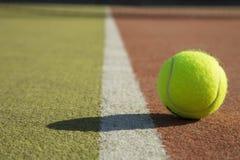 Теннисный мяч Стоковое фото RF