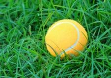 теннис зеленого цвета травы шарика Стоковые Фото