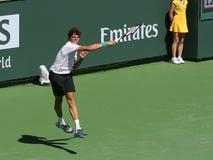 теннис игрока профессиональный Стоковая Фотография