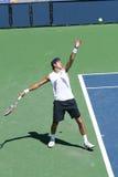 теннис игрока профессиональный Стоковые Изображения