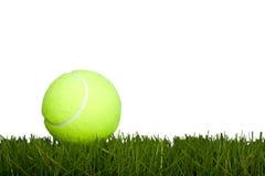 теннис травы шарика Стоковая Фотография RF