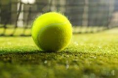 теннис шарика Стоковые Фотографии RF