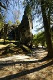Тень бросила против предпосылки высокорослых горных пород и деревьев Стоковое фото RF